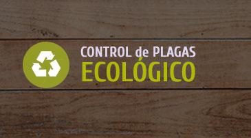 Especialistas en Control de plagas ecológico