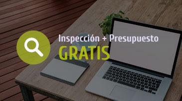 Inspección de plagas y presupuesto GRATIS