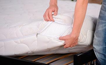 Síntomas de las chinches de cama